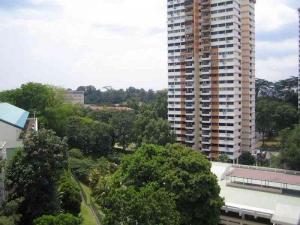 Braddell view estate singapore